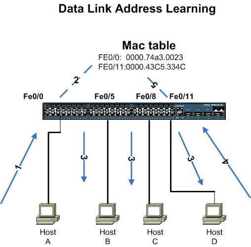 Data Link Address Learning