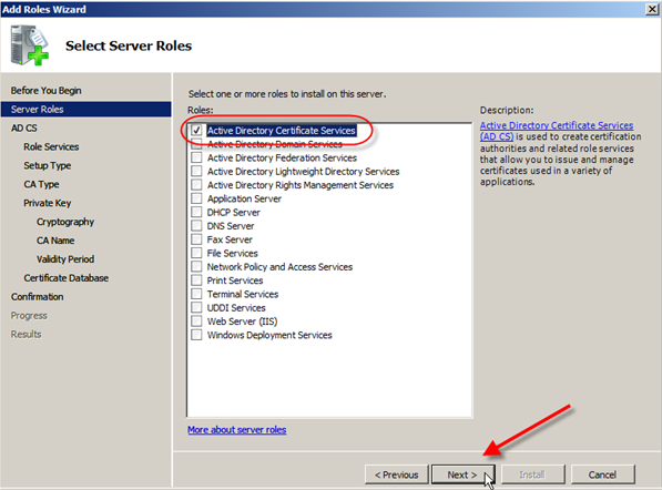 Server 2008: Install Active Directory Certificate Services - 2
