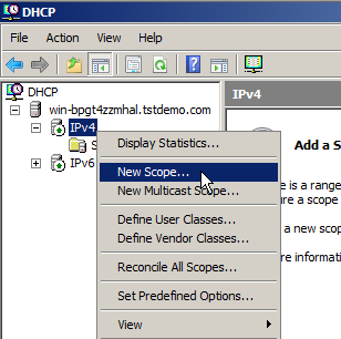 Configure DHCP on Windows Server 2008 - 2