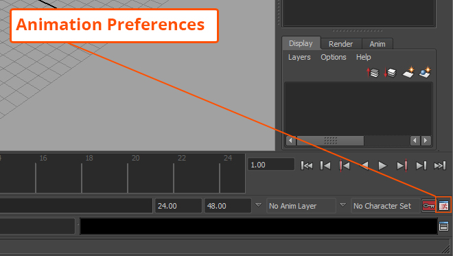 Animation_Preferences_Example