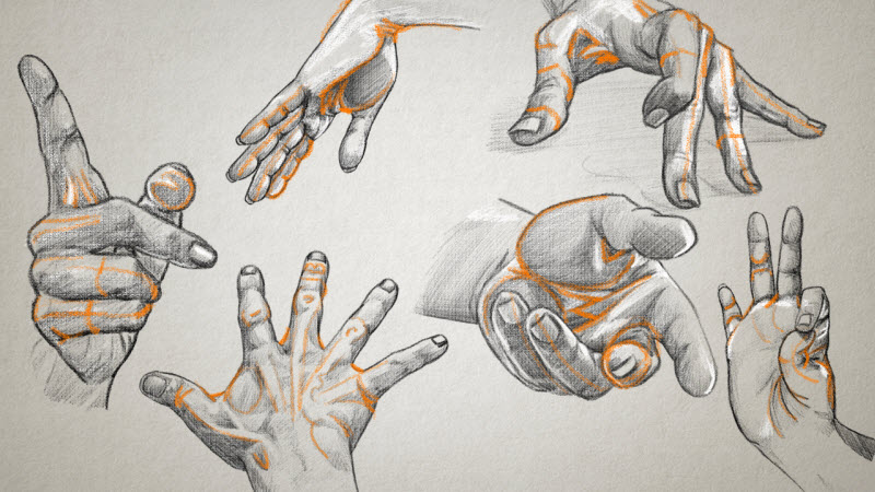 drawings of human hands in various positions and making various gestures