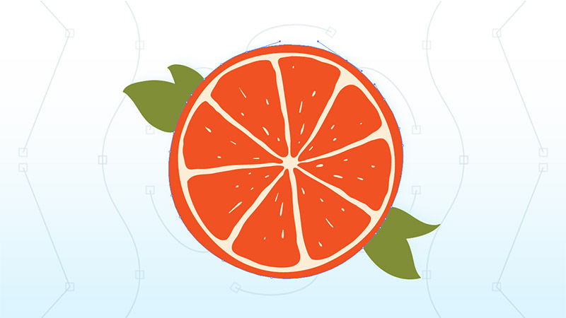 An graphic of a sliced orange created with Adobe Illustrator