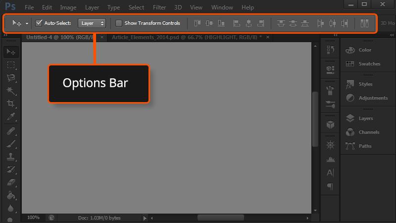 options bar